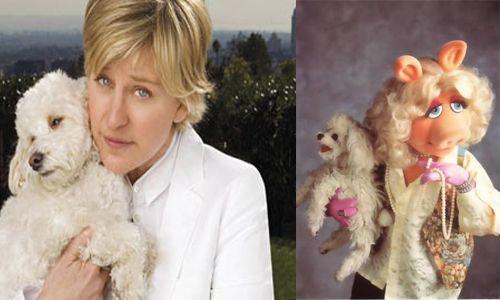 Ellen DeGeneres y Peggy con sus bichones