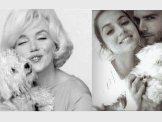 Marilyn Monroe y Ana de Armas con sus respectivos bichones