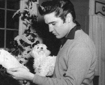 Elvis Presley, y su bichon maltes Foxhugh